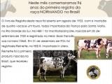 96 anos do 1° Registro Genealógico da Raça Normando No Brasil